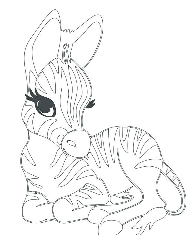 618x780 Baby Zebra Coloring Pages Coloring Page For Kids