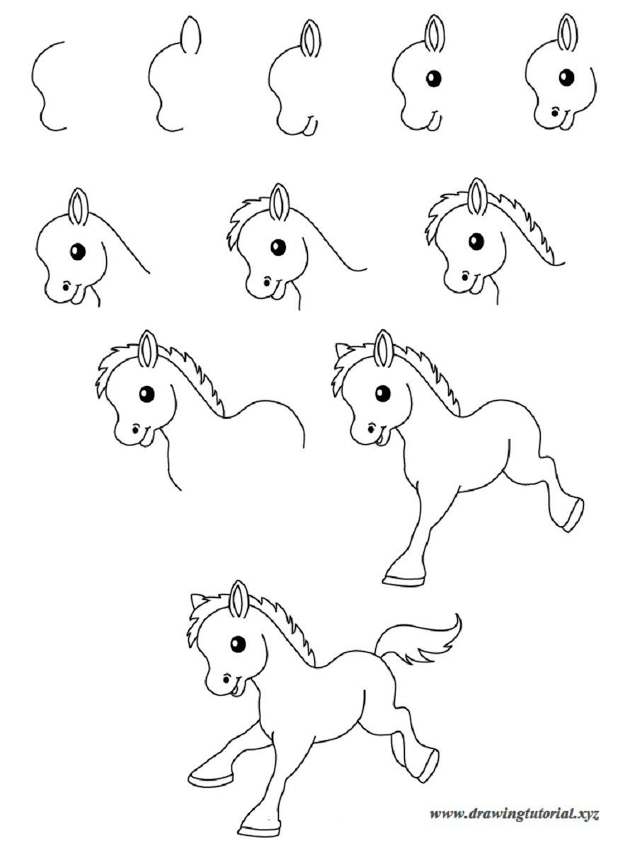 900x1200 Easy Drawings Step By Step Animals Best Wallpaper Best Drawing