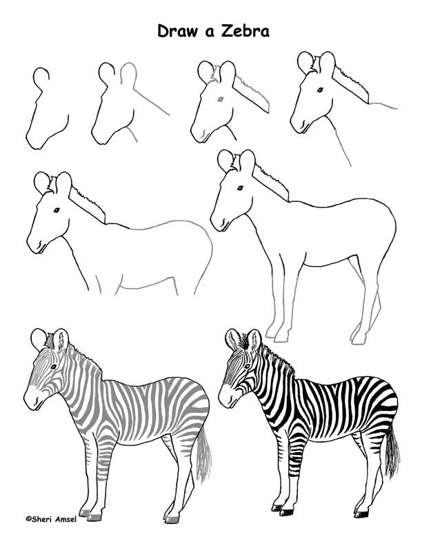 612x792 Draw An African Grassland Art Drawing Pages