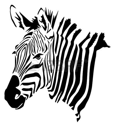 390x450 Zebra Head Stock Photos. Royalty Free Business Images