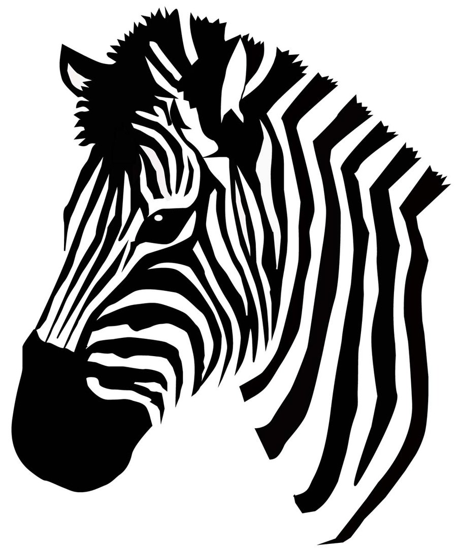 Zebra Head Drawing at GetDrawings.com | Free for personal ...