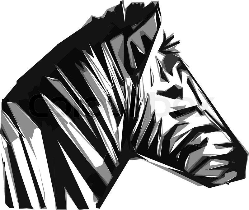 Zebra Head Drawing At Getdrawings Com