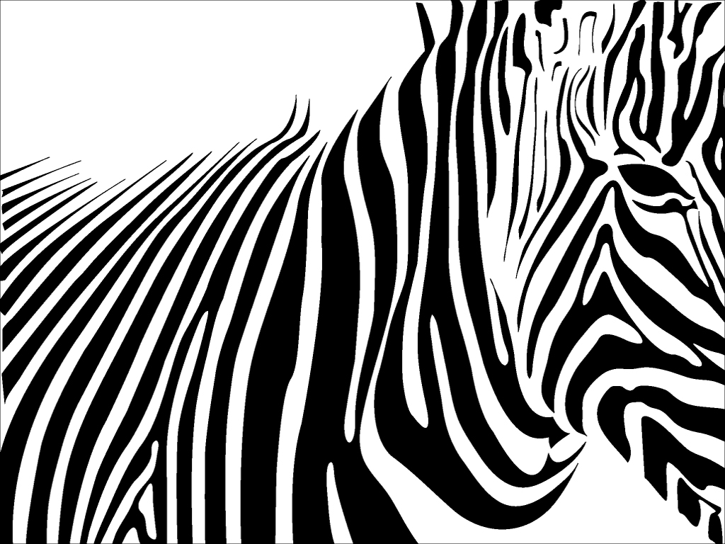 Zebra Print Drawing At Getdrawings Com Free For Personal Use Zebra