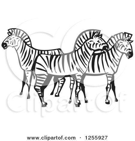 450x470 Clipart Of A Black And White Woodcut Group Of Zebras