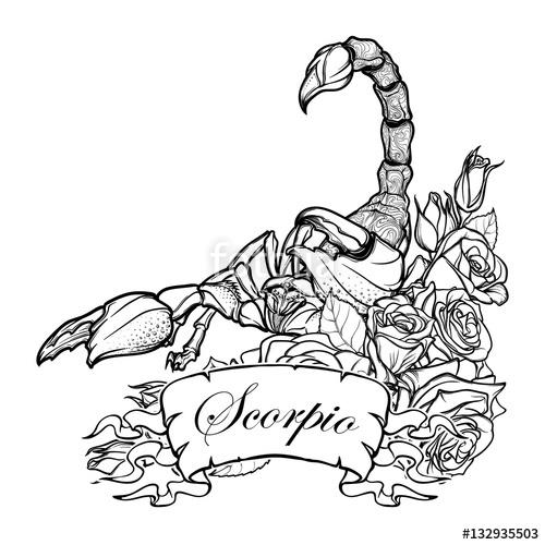 500x500 Zodiac Sign Scorpio. Detailed Realistic Scorpio In A Decorative