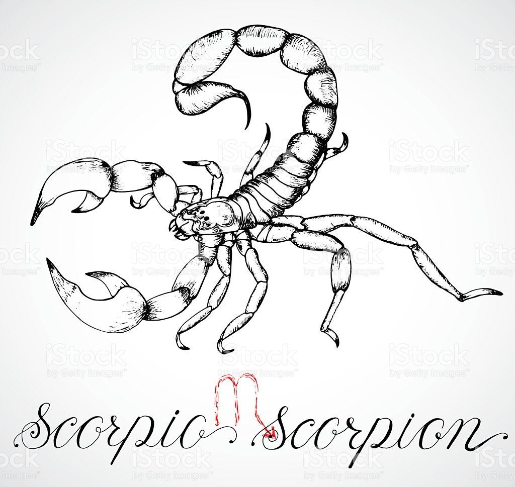 1024x969 Drawn Zodiac
