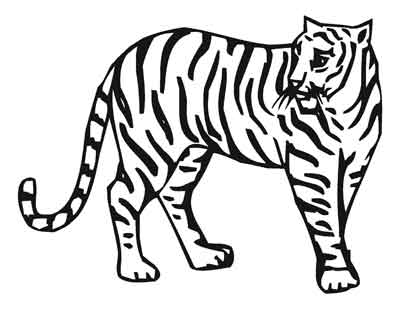 400x309 Creative Ideas Zoo Animals Coloring Pages Book