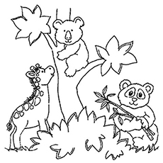 230x230 Top 25 Free Printable Zoo Coloring Pages Online