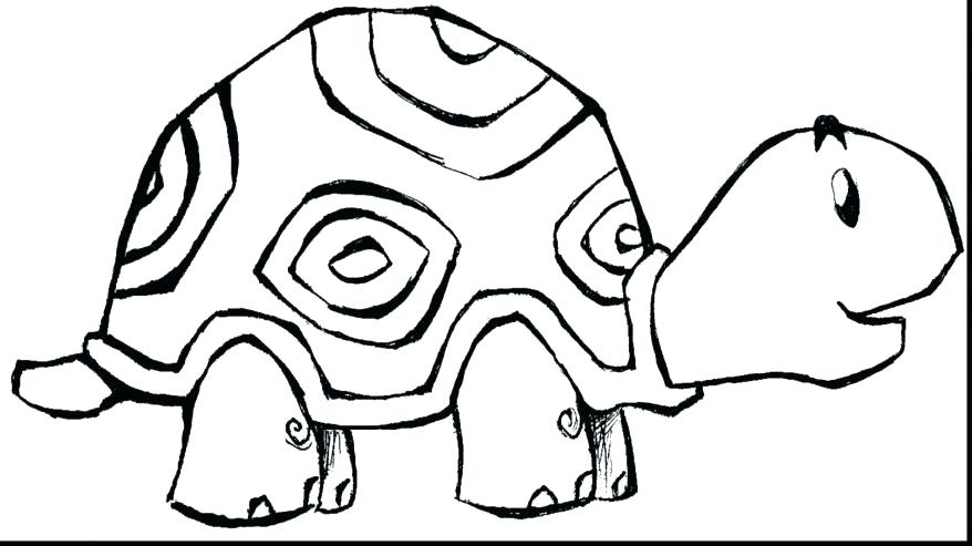 878x493 Zoo Animals Coloring Pictures Large Size Of Zoo Animals Coloring