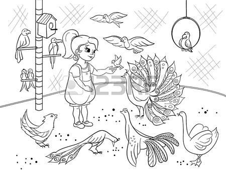 450x338 Childrens Cartoon Coloring The Contact Birds Zoo. Bird Black