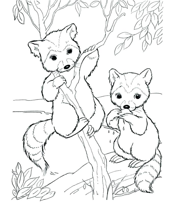 687x841 Top Rated Cute Animal Coloring Pages Images Free Baby Zoo Animal