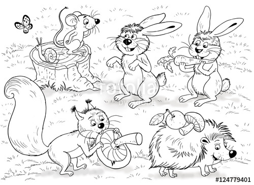 500x364 At The Zoo. Little Cute Forest Animals. Woodland Animals. Cute