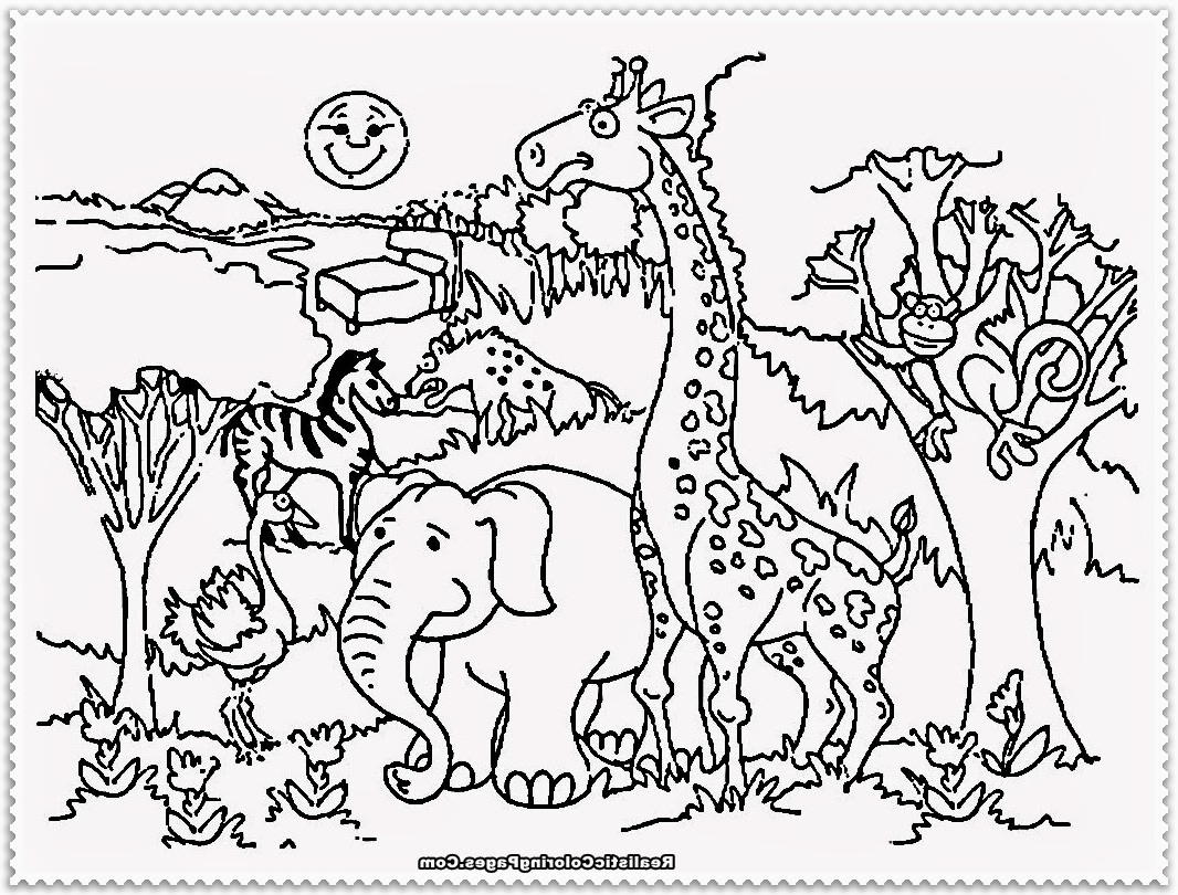 Zoo Cartoon Drawing at GetDrawings.com | Free for personal use Zoo ...