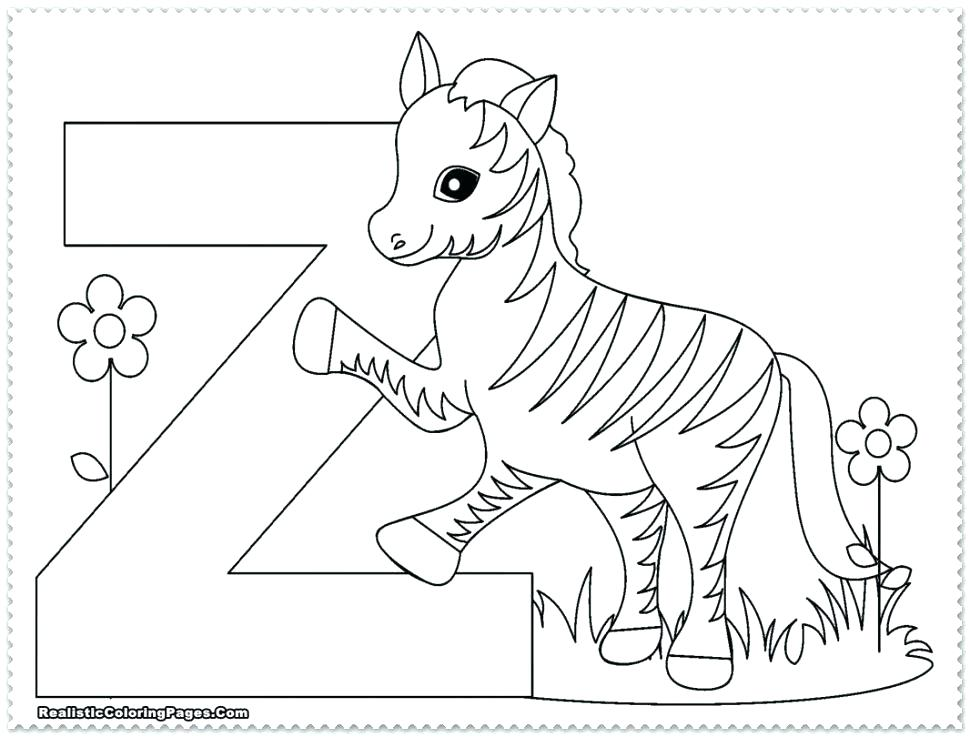 970x737 Simple Zoo Coloring Pages New Of Animals For Preschool On Free