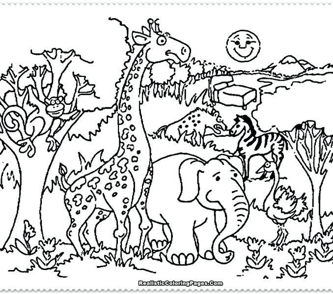 678x600 Zoo Animals Coloring Page Coloring For Kids Zoo Animals Coloring