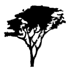 Acacia Tree Silhouette Clip Art