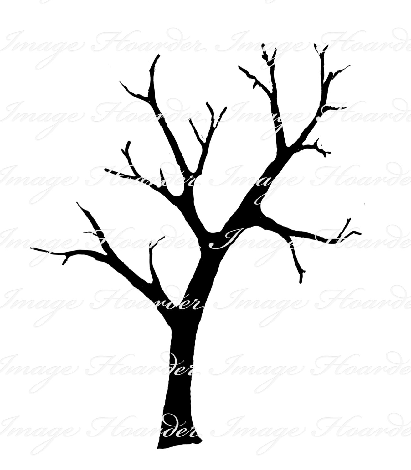 1313x1500 Clipart Of Tree With Branches 101 Clip Art