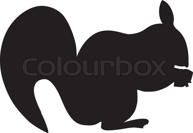 800x553 Squirrel Acorn Silhouette Clipart Panda