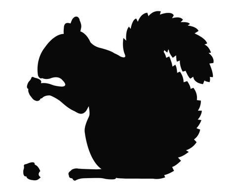 480x389 Squirrel Eating An Acorn Silhouette Die Cut Vinyl Decal Sticker