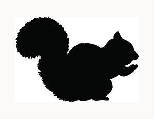 300x233 Squirrel Sticker Car Window Decal Cute Girl Love Pet Animal Acorn