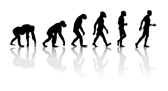 543x295 Adam And Eve Or Evolution What's Your Opinion