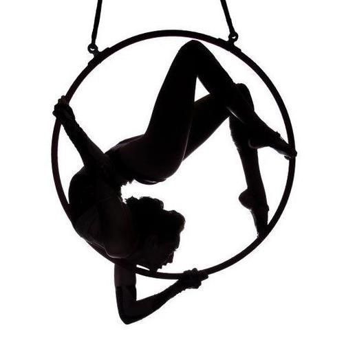 500x514 Aerial Hoop Lyra Silhouet Just Beautiful! Circus Circo Cirque