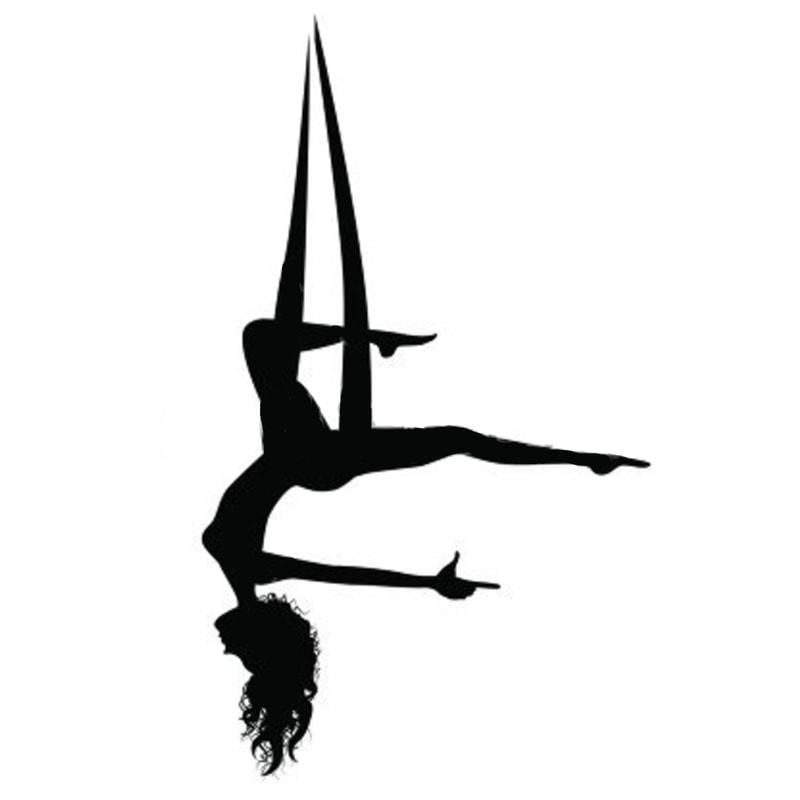 Aerial Yoga Silhouette