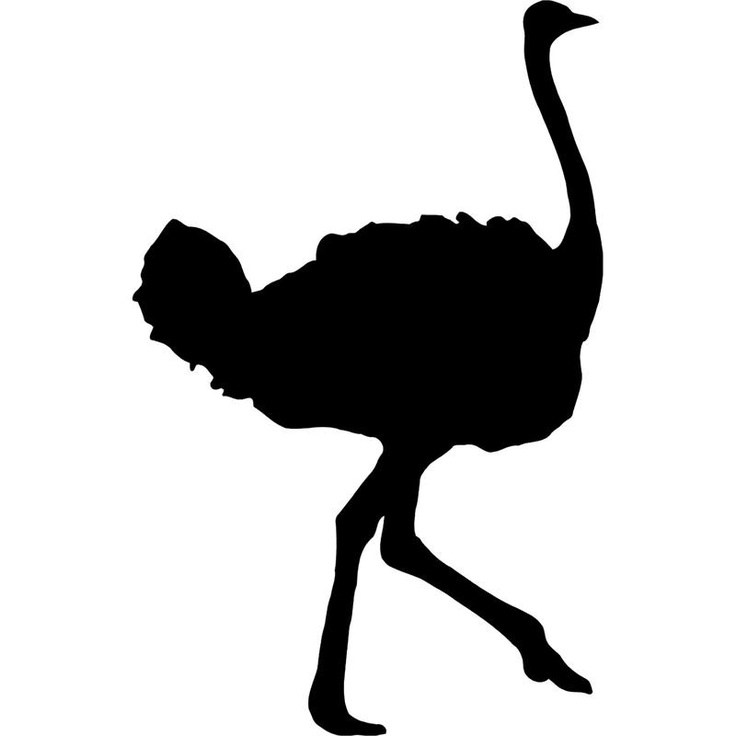 736x736 African Animal Silhouettes Clipart