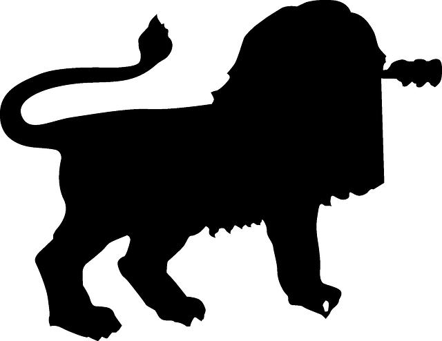 640x494 Black, Africa, Silhouette, Lion, Dangerous, Animal