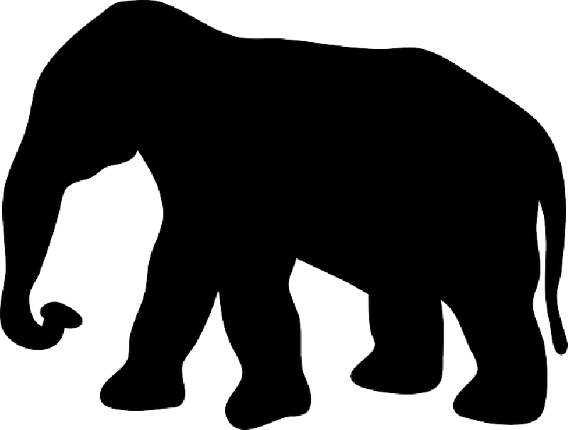 800x606 Black, Large, Africa, Silhouette, Elephant, Trunk