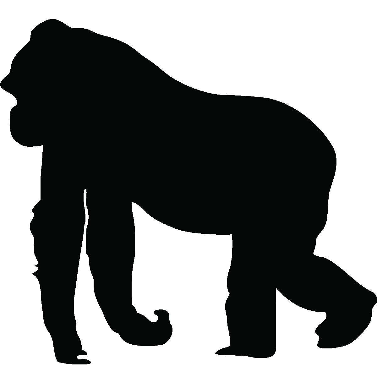 1200x1200 Gorilla Silhouette Silhouette Gorilla Wall