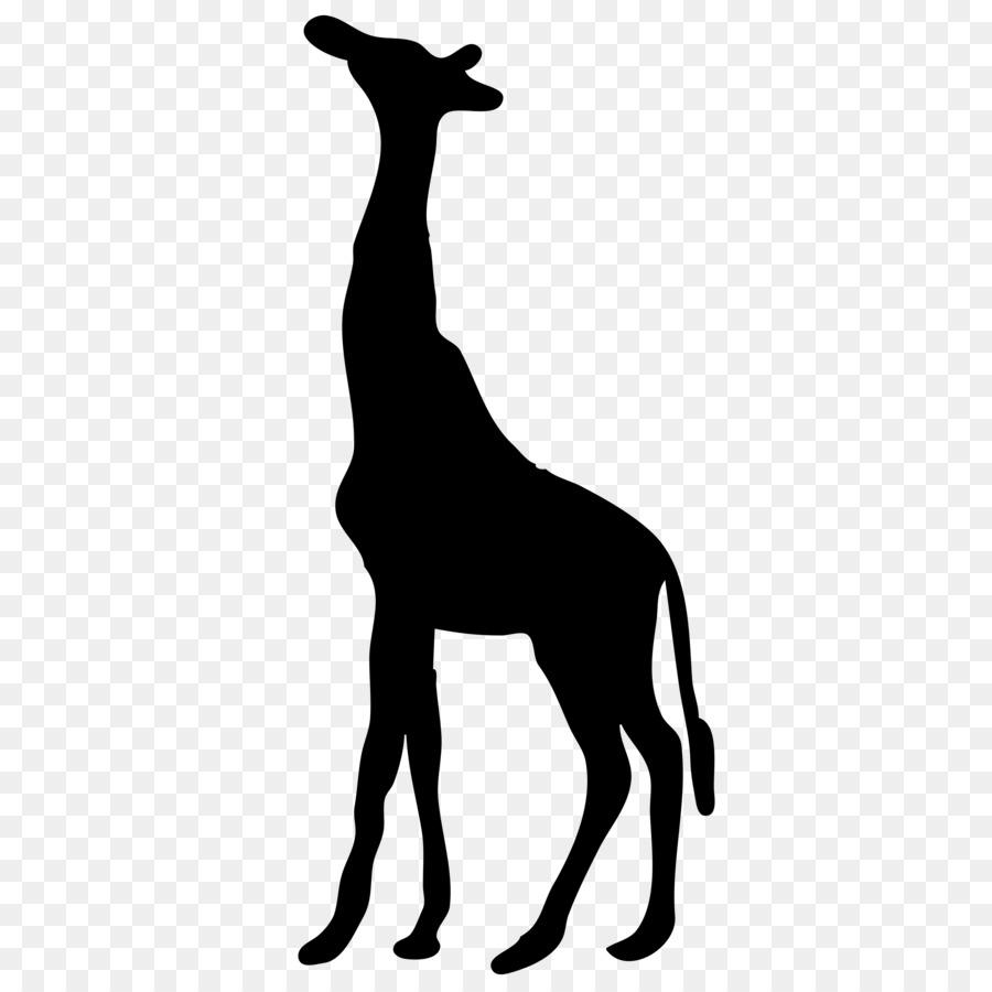 900x900 Silhouette West African Giraffe Sticker Clip Art