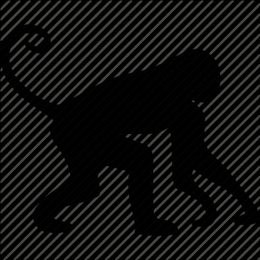 512x512 African, Animal, Animals, Marmoset, Monkey, Small Man, Wild Animal