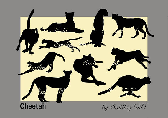 570x403 Cheetah Svg Silhouette Clipart Savannah Animal Safari Svg