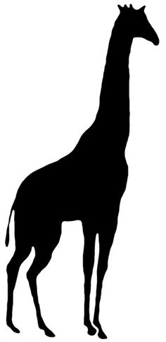 236x486 Giraffe Silhouette Collection African Wildlife