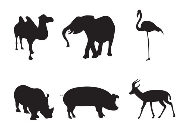 626x461 Africa Animal Silhouettes Stock Images Page Everypixel