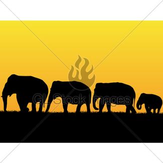 325x325 Africa Savanna Silhouette Set Gl Stock Images