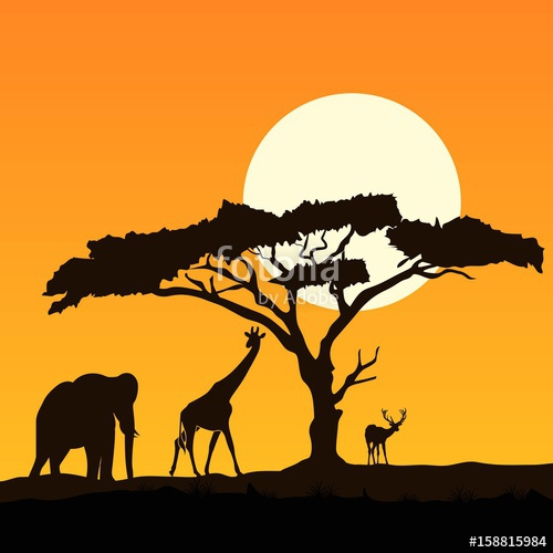 500x500 Beautiful Giraffe Silhouette Stock Image And Royalty Free Vector