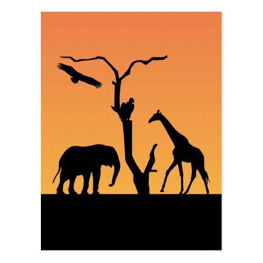 540x540 Giraffe African Silhouette Sunset Postcard