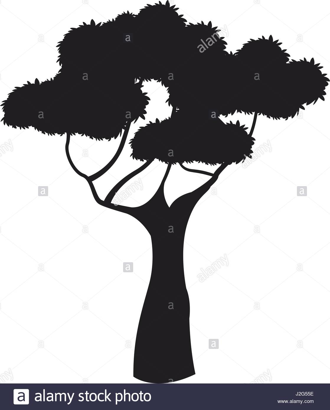 1118x1390 Silhouette Tree African Plant Design Image Stock Vector Art