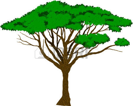 450x359 Acacia Tree Clipart Stock Vector Acacia Tree Silhouette 284921402