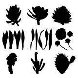 160x160 Black Silhouettes Of Cactus, Agave, Aloe, And Prickly Pear. Cacti