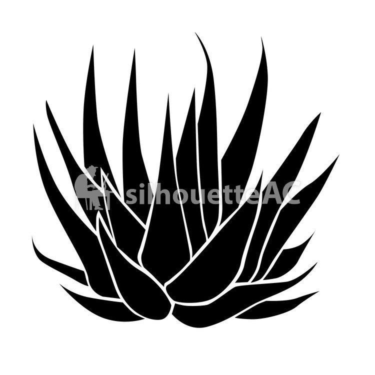 750x750 Free Silhouette Vector Up, Aloe, Aloe Vera