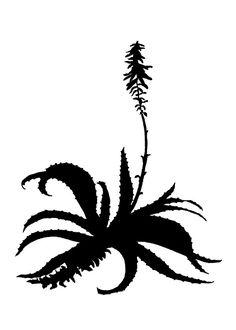 236x330 Botanical Aloe Stencil Silhouette