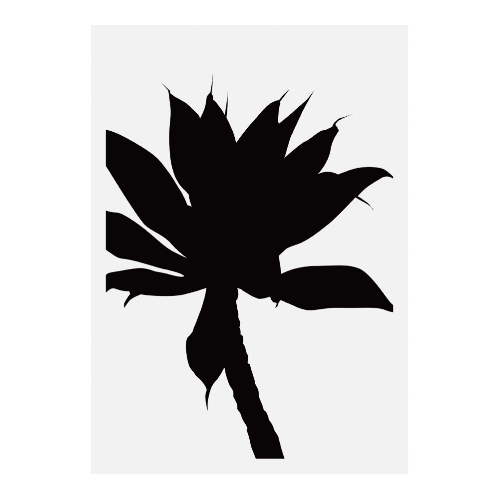 1001x1000 Black Agave Wall Art Temple Amp Webster