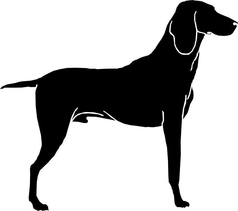 800x710 Airedale Terrier Dog Silhouette Stickers By Mishamisha Redbubble
