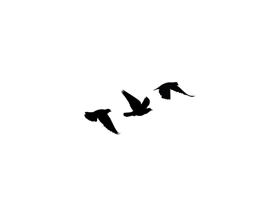 900x700 Bird Clipart Tattoo