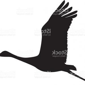 300x300 Photostock Vector Silhouette A Flock Birds Black Contours