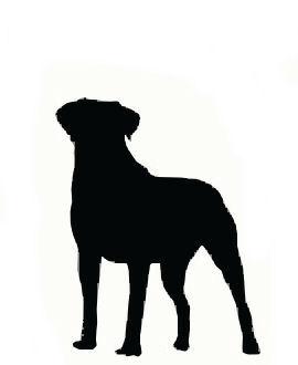 270x330 Dog Silhouette Art Dog Silhouette Art Backgrounds