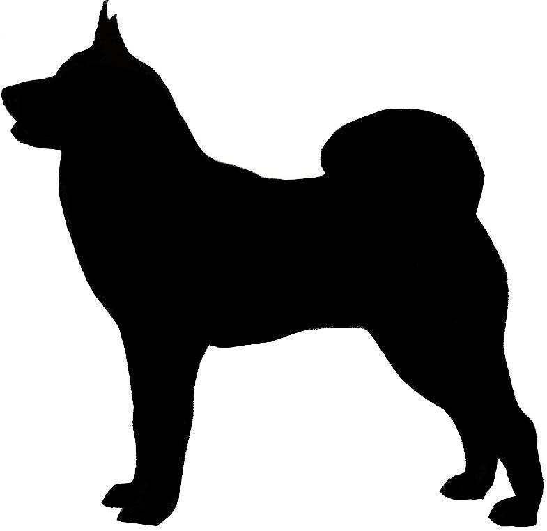 785x762 Greater Swiss Mt. Dog